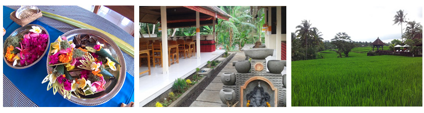 welcome-to-jeding-bali-cooking